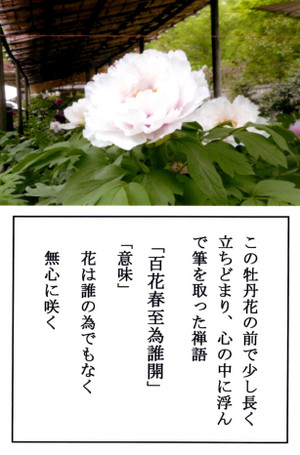 Img019_4
